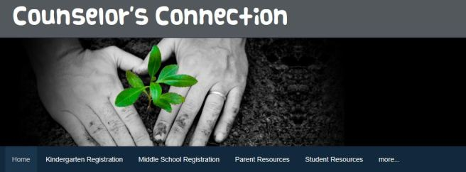 CounselorsConnection