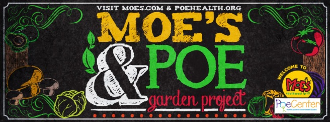 Moe's and Poe Garden Project