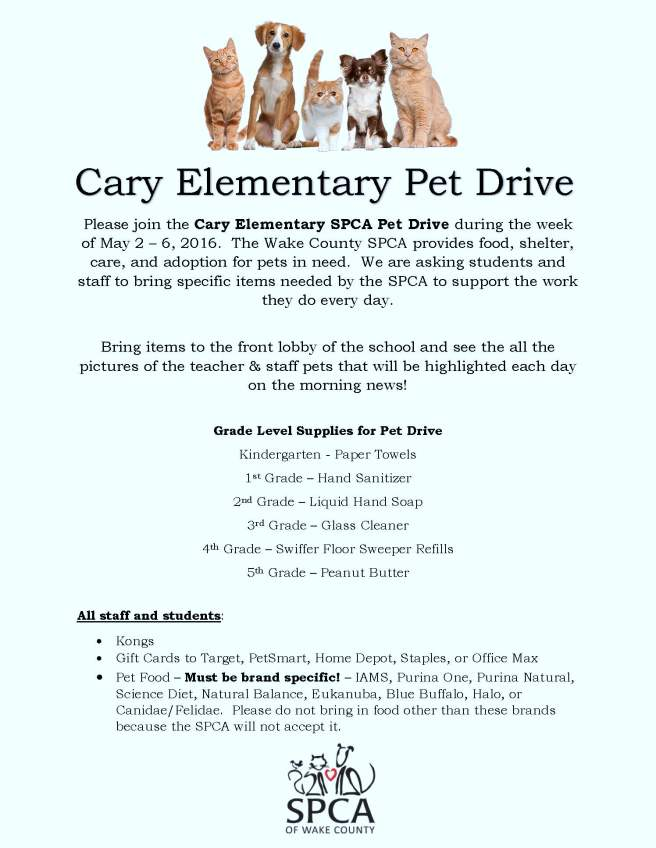 Pet Drive Flyer