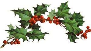 christmasholly4