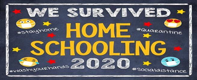 Survived Homeschooling 2020